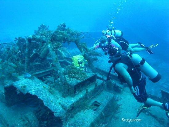 Best Scuba Destinations Bahamas
