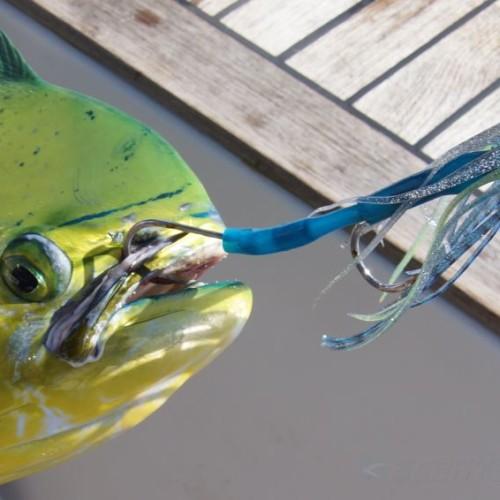 Yachts-Riviera-Maya-Deep-Sea-Fishing-Dolphin-Fish-Dorado-Mahi-Mahi