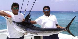 Yachts-Riviera-Maya-Deep-Sea-Fishing-White-Marlin