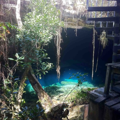 Bahamas_AustinSmithLauraGrouper_MiaToose-e1392671185763