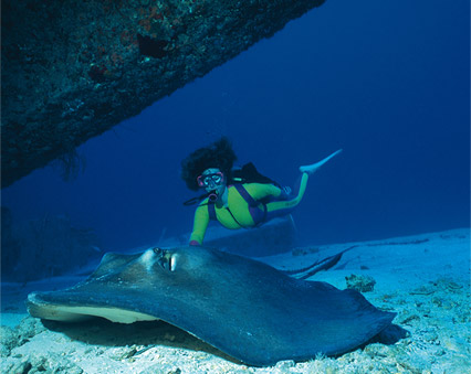 grand-bahamas-scuba2