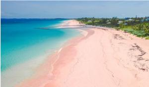 Pink Sand Beach (Harbour Island)