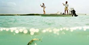 Deep Sea Fishing And Bonefishing Harbour Island