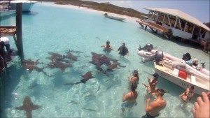 Offshore Fishing Rum Cay