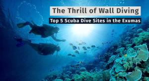 Exumas Scuba Diving